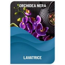 LAVATRICE PROFUMATO ORCHIDEA